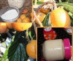 Iogurte Nêsperas com aveia