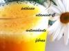 Néctar de tangerina e laranja