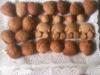 Biscoitos de Ovo